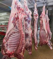 Мясо от 1 тн куриное,  говядина,  баранина